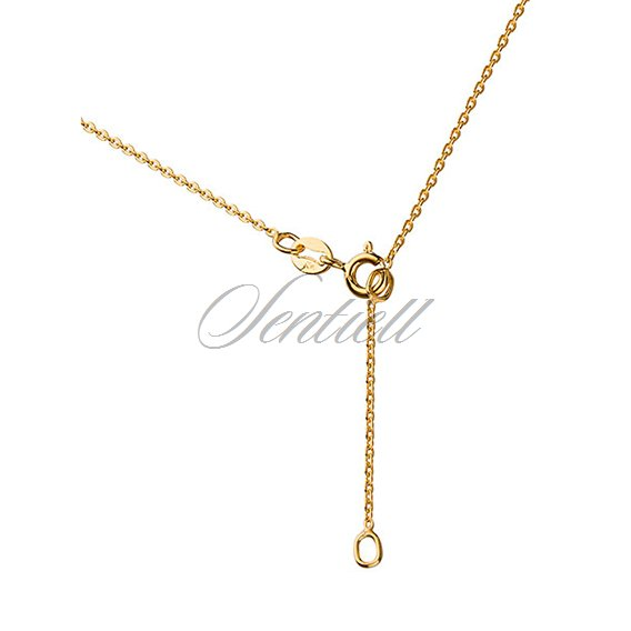 Silver (925) necklace with gold-plated key