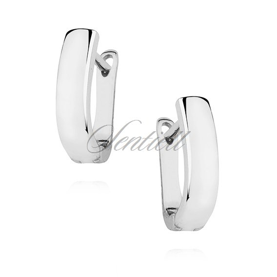 Silver (925) high polished earrings